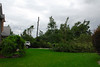 20110828_Hurricane_Tree_Damage_002_out