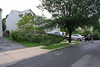 20110828_Hurricane_Tree_Damage_023_out