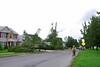20110828_Hurricane_Tree_Damage_069_out