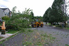 20110828_Hurricane_Tree_Damage_057_out