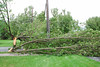 20110828_Hurricane_Tree_Damage_013_out