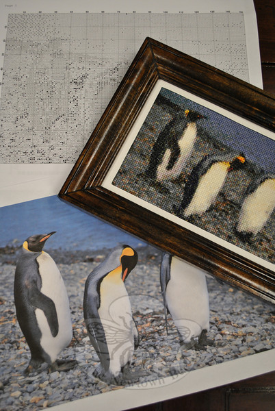Using a photograph taken by her husband in the Antarctic, Friends of Counted Embroidery member Marge Gingolaski developed her own pattern with a specialized computer program, and created a cross-stitch picture of the penguins. (Crevier photo)