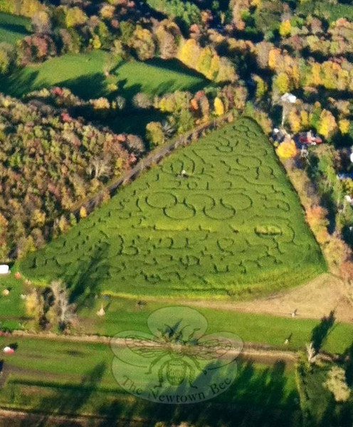 An aerial view of this year's corn maze at Castle Hill Farm shows a series of squiggles and doodles around the perimeter of the field, all framing the Olympic rings and, if you look closely, the numbers 2012. The maze, at 25 Sugar Lane, remains open daily until Halloween. Hours are 11 am to 5 pm on weekends, and 2 to 5 pm weekdays. Admission for the maze is $8. Pumpkins are also available at the farm. (Scudder Baggett photo)