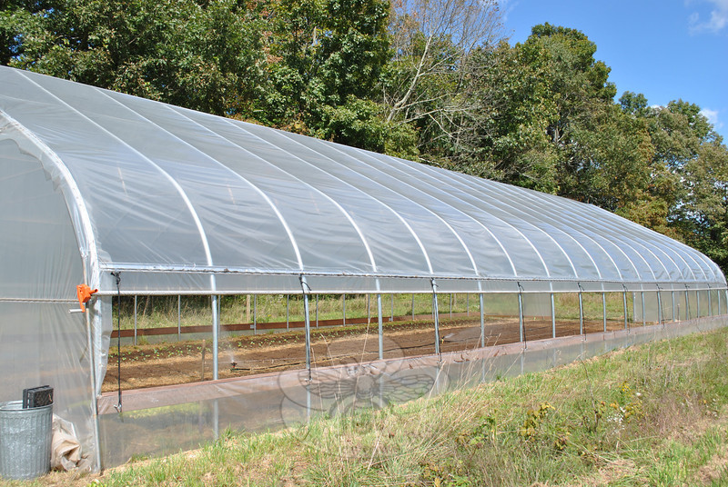 At the far end of the 73-foot-long high tunnel erected this spring on their Cherry Street property, Sue Shortt of Shortt's Farm and Garden Center tends to sprouts that will provide produce during an extended growing season for CSA members and customers of the Garden Center.	(Crevier photo)