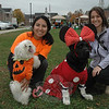 "Dogs were dressed for Halloween on Saturday, October 27, at Fairfield Hills as the town Parks and Recreation Department sponsored ""Howl-o-ween,"" a fundraiser to benefit Newtown Park & Bark, a planned off-leash dog park. Shown, at left, are Catty Rebar and her Maltese-breed dog Lola, who was dressed as a pumpkin, and Theresa Viesto, and her black Labrador retriever Tehya, dressed as Minnie Mouse. (Gorosko photo)"