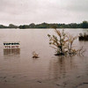 Halloween weekend 1998, Augusta, Kansas. Constant rain from Friday evening thru Sunday morning flooded the area around the city and then eventually in the city itself. This sign is in a field just west of Augusta and advertised topsoil for sale.<br /> <br /> Notice the large numbers of the phone number are still above the water.
