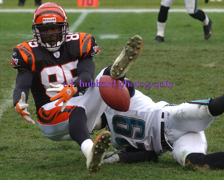 E.L. HUBBARD/JOURNALNEWS<br /> Bengals Chad Johnson can't keep a handle on the ball but Jaguars Jason Craft is flagged for pass interference on the play in the third quarter.