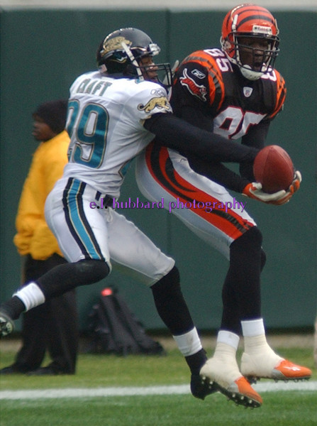 E.L. HUBBARD/JOURNALNEWS<br /> Bengals Chad Johnson catches a pass in front of Jaguars Jason Craft for 44 yards in the second quarter.