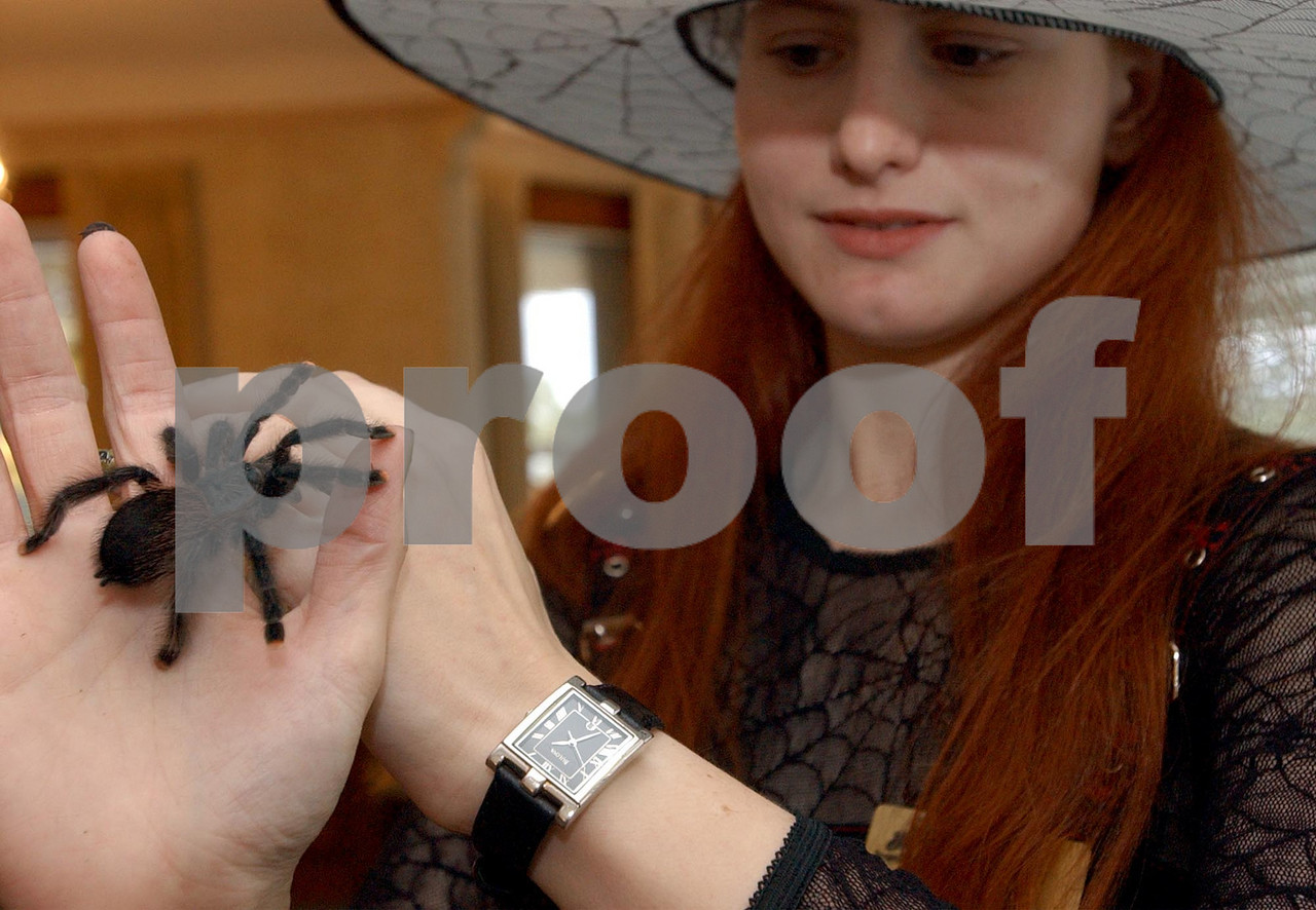 Webb Noonan Funeral Home staff funeral director Amanda Gollaway holds one of her pets, a tarantula named Church, Saturday at the funeral home.