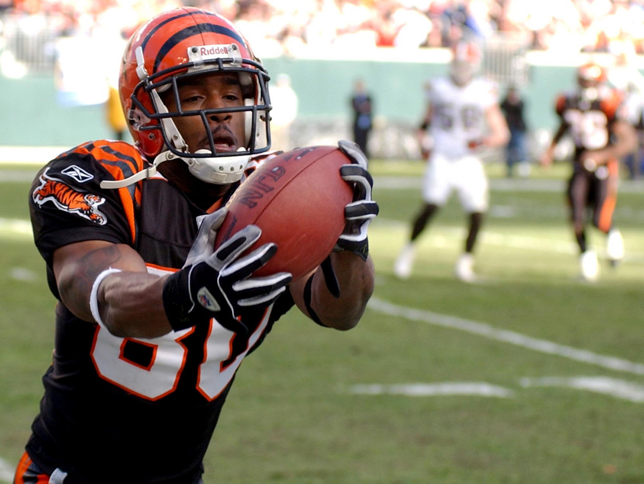 Cincinnati Bengals wide receiver Peter Warrick catches a pass near the sidelines in the first half at Paul Brown Stadium Sunday, 12/28/03. The reception was challenged by Cleveland, but the pass stood.