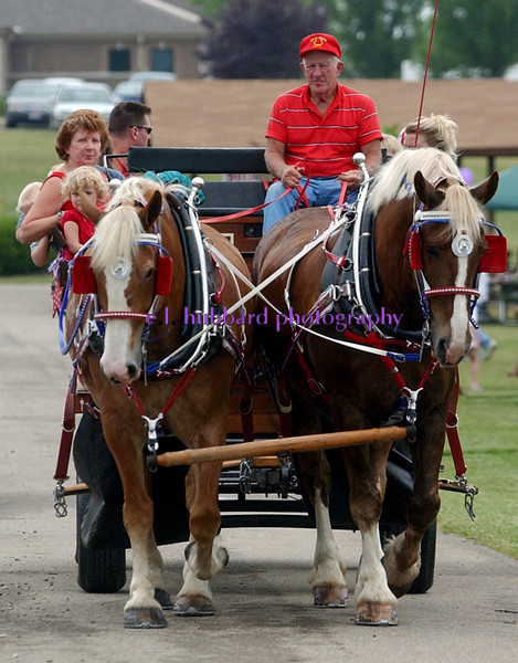 Horse-drawn carriage rides were popular during the 4th of July Festival Tuesday, 07/04/06. Staff photo by E.L. Hubbard