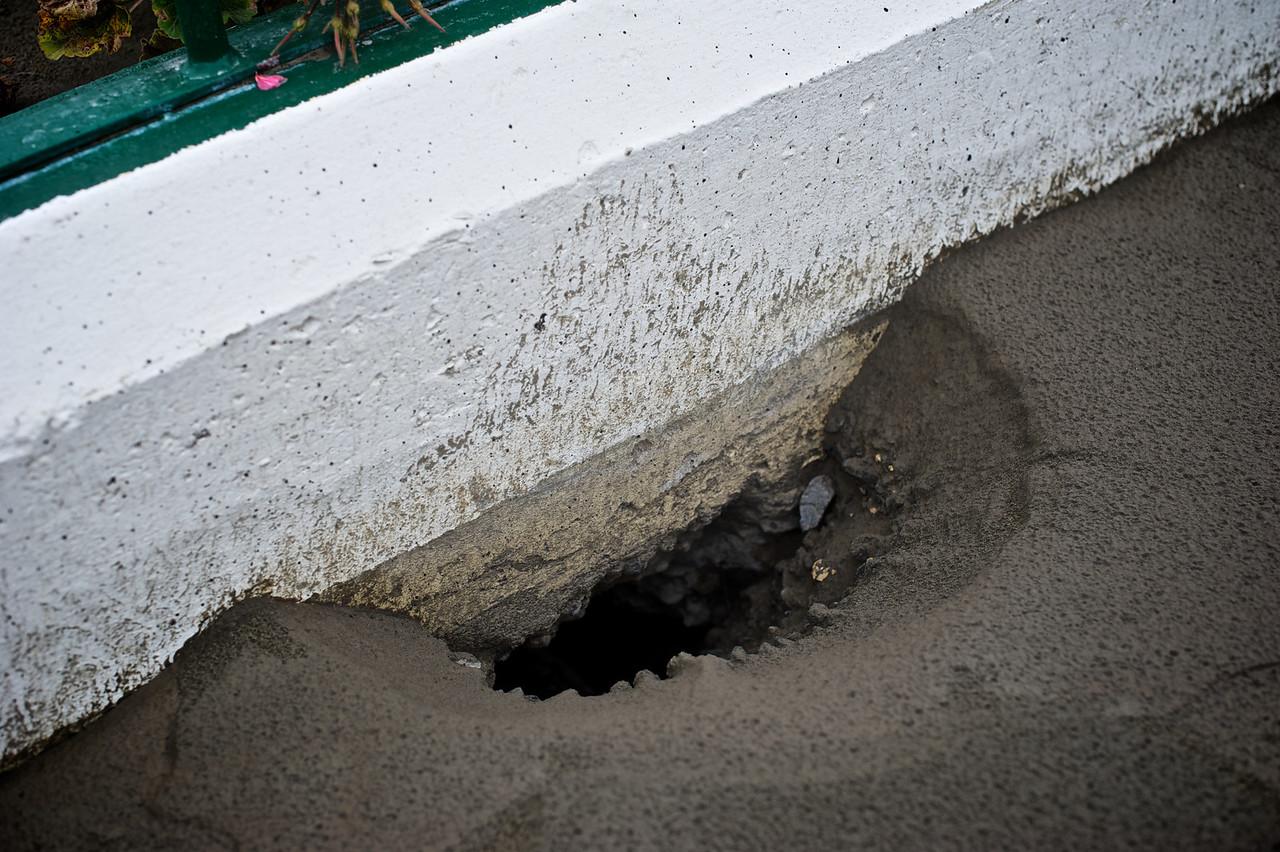 Kaiapoi_2011-02-23_11-03-54_DSC_8595_©RichardLaing(2011)