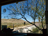 BOOTH VIEW 2<br /> And for those who inquired about what my view looks like while not thusly engaged, here's the same shot (roughly) taken without all the vehicles. Not too shabby, huh? Notice how I've pruned the mesquite tree so you can still keep an eye on traffic.