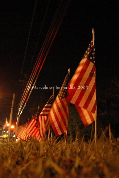 21 flags lined the drive. One for every year he was with us. Far too few, for his life was only beginning.