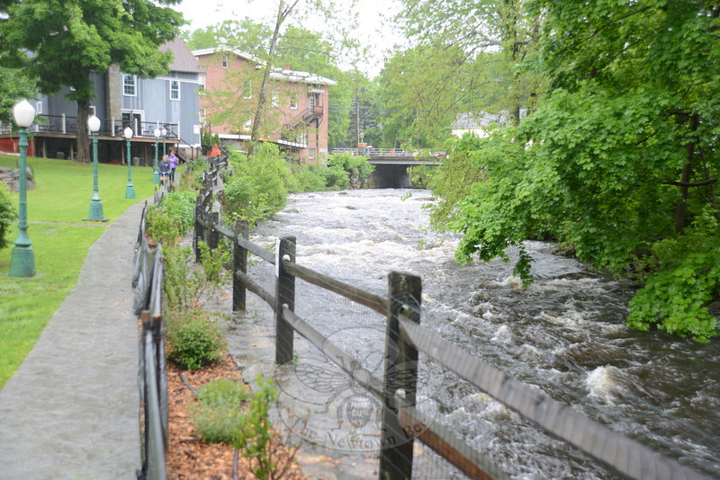 Days of rain and a swollen river prompted a change of plans for the annual Great Pootatuck Duck Race on May 25.   (Bobowick photo)