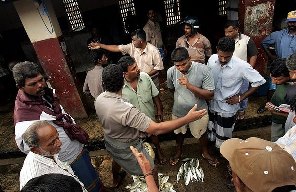 2/1/2005 -- Trincomalee, Sri Lanka -- Hundreds of men stream through the morning fish auction in Trincomalee, Sri Lanka each morning to buy and sell fish.  Project on Tsunami recovery by Dina Rudick and John Donnelly. Globe Staff Photo, Dina Rudick.                                      Note: Donnelly's second story will focus heavily on these fishermen.