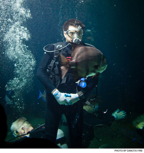 """Brian Weitz of the band """"Animal Collective,"""" and friends, scuba dive at the National Aquarium in Baltimore on October 17, 2011. Photo by Dakota Fine."""