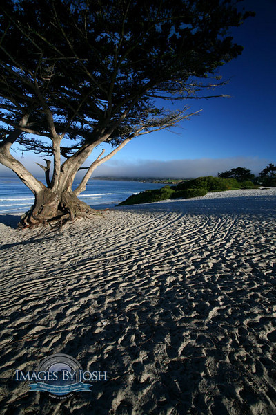 Carmel_Beach_Ocean_IMG_1272