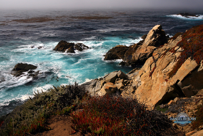 Big_Sur_Coast_Fog_IMG_2800