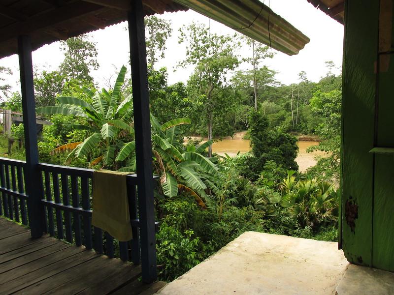 La tierra de Campo Bijao es tan fértil que se puede sembrar cualquier fruta y verdura. El color verde de la naturaleza es impresionante y es genial escapar de la contaminación de Barrancabermeja y poder pasar tiempo en el campo colombiano.
