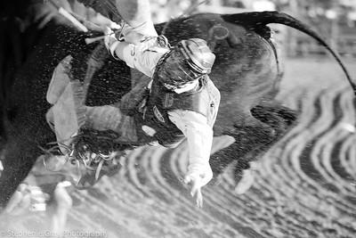 Cattlemens Days 2011-15