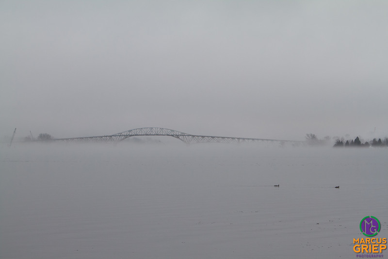 Ducks and ice alike float lasily near the soon-to-be-destroyed Champlain Bridge.