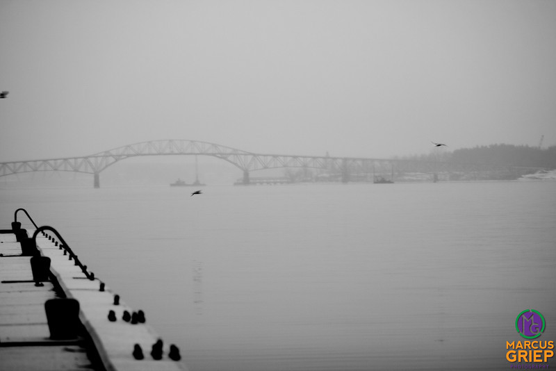 Gulls fly around the lake in front of the Champlain Bridge and Crown Point. Heavy contrast is applied, giving the vingetting in the lower corners and blotting objects in the dock into blacks.