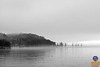 Fog lazily rolls across Lake Champlain and the hills of Port Henry. A grouping of four trees and the faint outline of lampposts marks the Port Henry ore dock, the main public site for viewing the demolition.