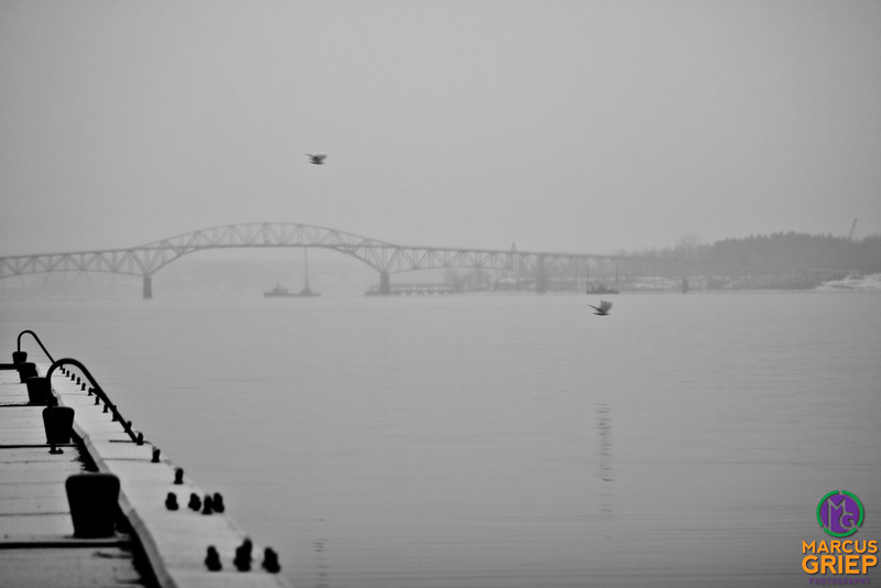 The Crown Point end of the Champlain Bridge is featured as gulls fly through the foreground above the Port Henry ore dock.