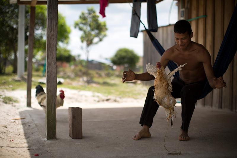 Orley lleva cuatro años con su gallo de pelea llamado Mi Pinto (por las plumas multicolor que viste). Lo lleva a todas partes, incluso cuando trabaja en el campo. Mi Pinto ya ha ganado varias peleas de gallos, que son muy populares en esta región.