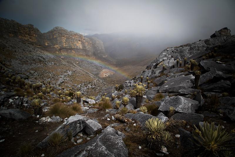Desde la casa de Henry se puede ver la Sierra Nevada del Cocuy, cuyas montañas nevadas llegan hasta los 5.300 metros de altura . Allí vive la mayor población U´wa. El territorio ancestral cubría aproximadamente 14.000 kilómetros cuadrados, la mitad del área de Bélgica. Hoy en día, no poseen más del 14% de estas tierras.