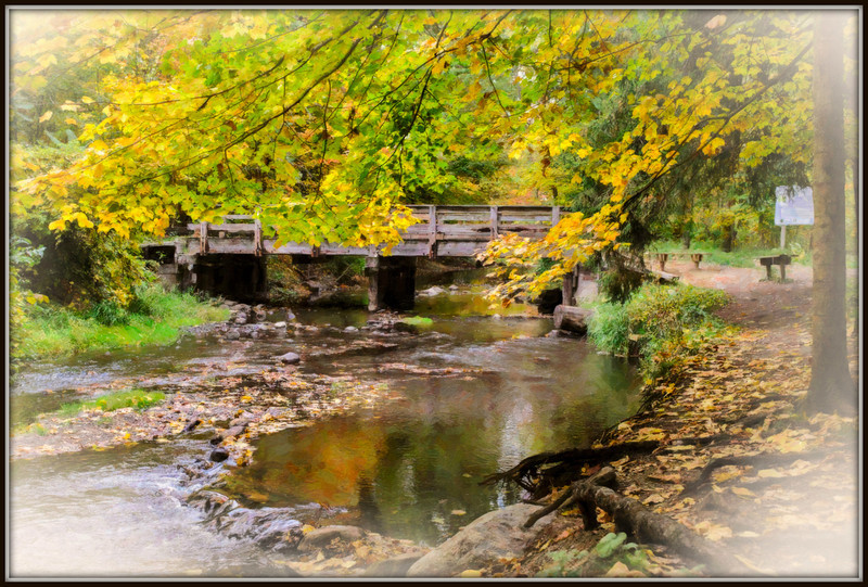 Bennett Park bridge with paintery look, Charlotte, MI fall 2012.