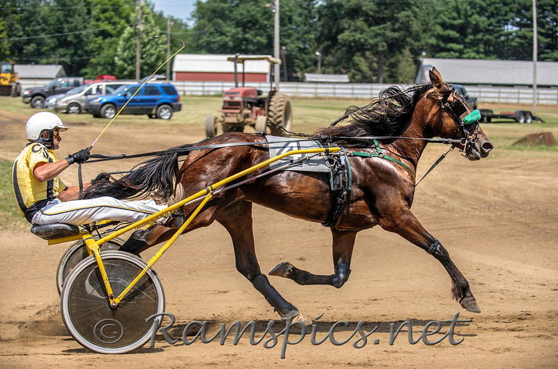Harness racing at the 2013 Eaton County 4-H fair in Charlotte, Michigan. Summer 2013