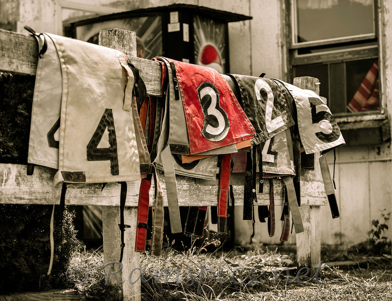 Numbers the horse wear while racing the the 2013 harness races at the Eaton County Fair in Charlotte, Michigan.