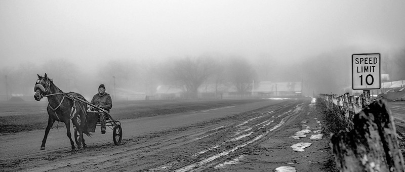 Out of the fog. Photo taken at Eaton County Fair grounds horse track on a foggy morning in April 2014.