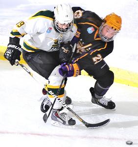2014 NCAA Division III Ice Hockey National Championship game