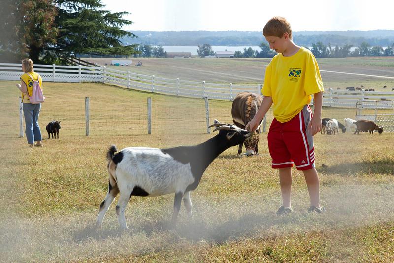 Break time with Serenity Farm animals.