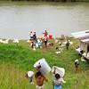 El 30 de agosto 2011 la comunidad Nonam retornó con su propio esfuerzo y la solidaridad de individuos y organizaciones nacionales e internacionales ante los incumplimientos del Gobierno Distrital de Buenaventura.