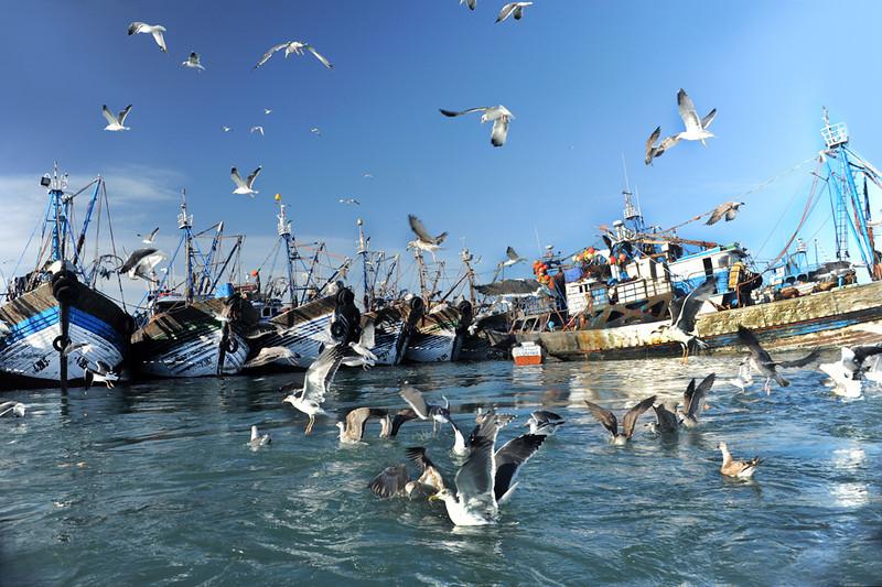 Dakhla, Morocco