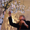 Rosangela Dos Santos, a colleague of runners from MIT, adds to one of the message trees.
