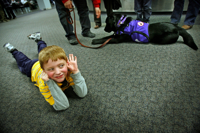 Upon meeting his new utility dog Pudge at the airport, Reece reacted with giggles and nervousness as he laid on the floor near baggage claim.  Reece has severe autism and his father Brad Trahan traveled to Canada to train and collect the utility dog that Reece would eventually be hooked-up to in public to help prevent Reece from getting lost or put himself in dangerous situations.