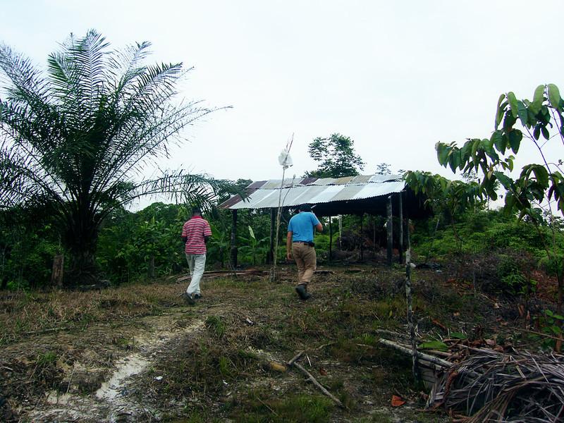 Acompañamos a parte de la nueva Junta Directiva a la zona donde sus ranchos de trabajo han sido quemados en el pasado.