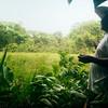 La destrucción de la vegetación nativa tiene repercusiones graves no solo para la Zona de Biodiversidad sino para todo el territorio de El Guamo. Estamos a 10 minutos en bote de la finca de Eustaquio. Nos muestra una ciénaga, una de muchas en la zona, y con preocupación comenta que dentro de un año las ciénagas se van a secar por la destrucción del bosque húmedo en su Zona de Biodiversidad.