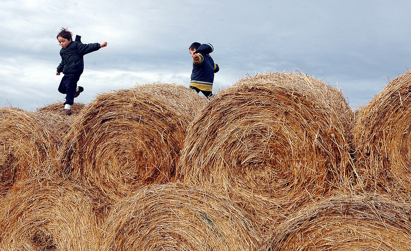 Journal photo by Bill Schaefer<br /> Dylan Meyer, 6, left, and his brother Jesse, 4, jumps from hay bale to hay bale during a holiday open house at the Hartland Ranch Saturday afternoon.