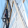 KRISTIN BAUER | CHRONICLE<br /> The Pride of Baltimore II tall ship crew members performed various checks of the masts as the tall ship was sailing through Lake Erie on a Monday afternoon, Sept. 5 cruise.