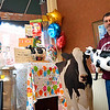 """Scott Markel, Board of Directors member for Spirit of '76 Museum, shows off a birthday display for Molly Bawn, """"Queen of the Cheese Empire,"""" at the museum in Wellington Feb. 19.  Molly Bawn's 138th birthday is Saturday.  STEVE MANHEIM / CHRONICLE"""