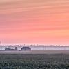 UK Weather: Frosty and Misty sunrise, Cambridgeshire