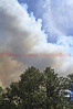 Smoke billowing up on Day 2 of the Black Forest Fire Incident, near Colorado Springs, Colorado.