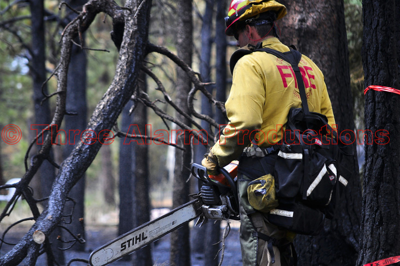 A Sawyer with El Paso County Wildland Team working on Day 7 of the Black Forest Fire Incident.