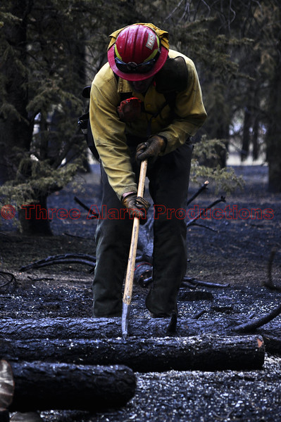A sawyer working on Day 7 of the Black Forest Fire Incident.